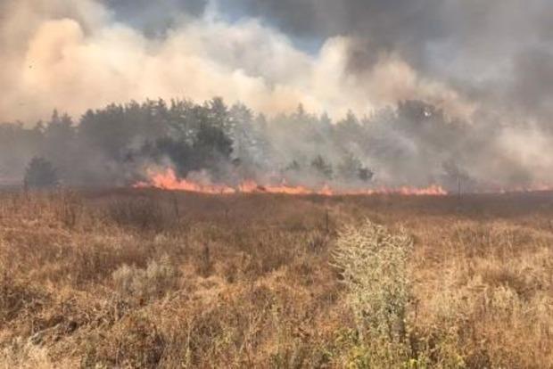 Пожары в Харьковской области расследуются как поджоги