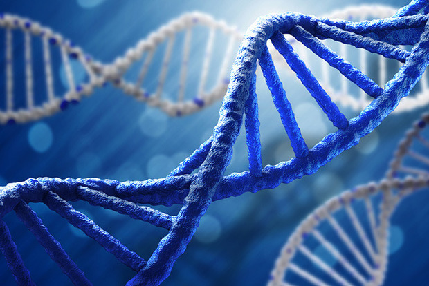 Китай підтвердив появу перших у світі ГМО-дітей