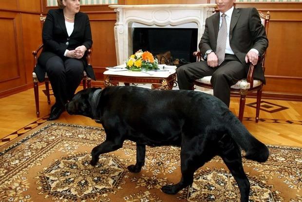Немецкий журнал назвал Путина собакой