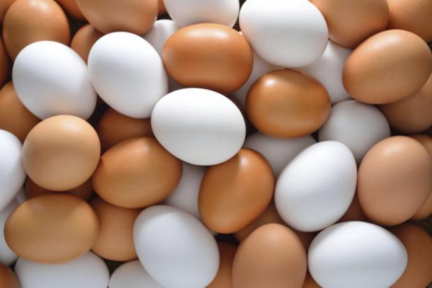 Разница между белыми и коричневыми куриными яйцами и какие лучше?