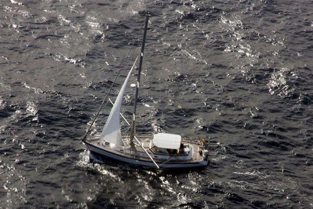 Британская яхта затонула в океане после столкновения с китом