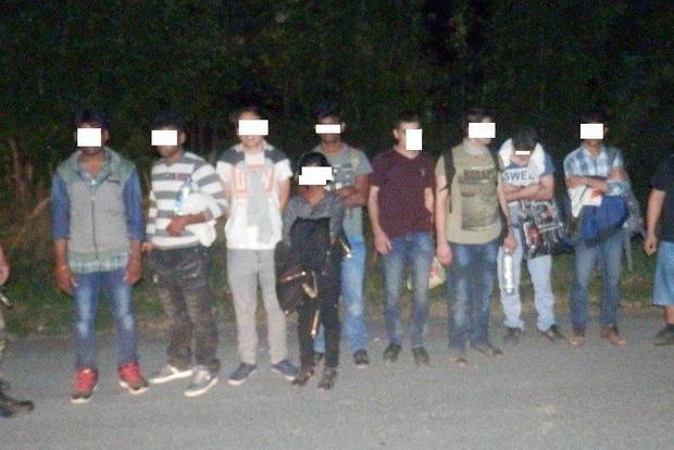 В Закарпатской области задержаны 11 нелегалов из Афганистана