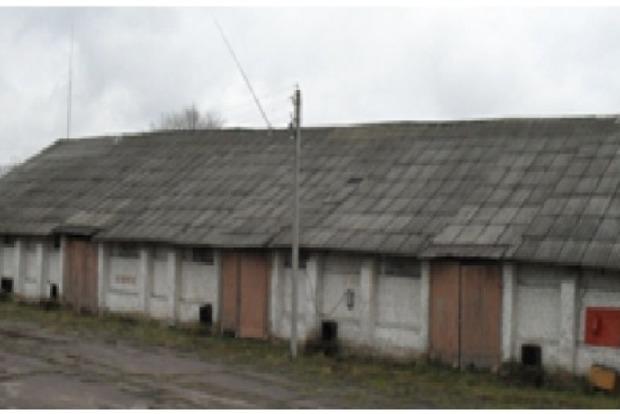На Днепропетровщине разоблачены дельцы, не заплатившие более 5 миллионов гривен налогов, изъято почти 140 тонн семян подсолнечника