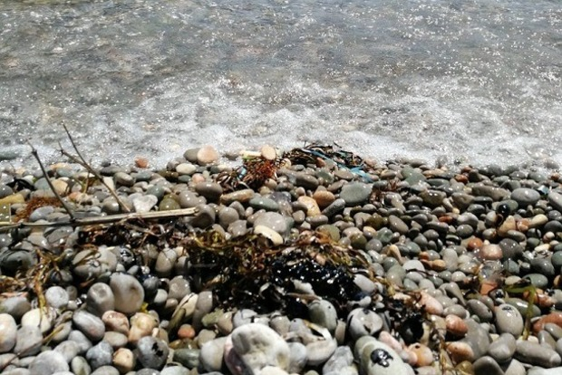 Море в Крыму стало черным. Невозможно отмыться