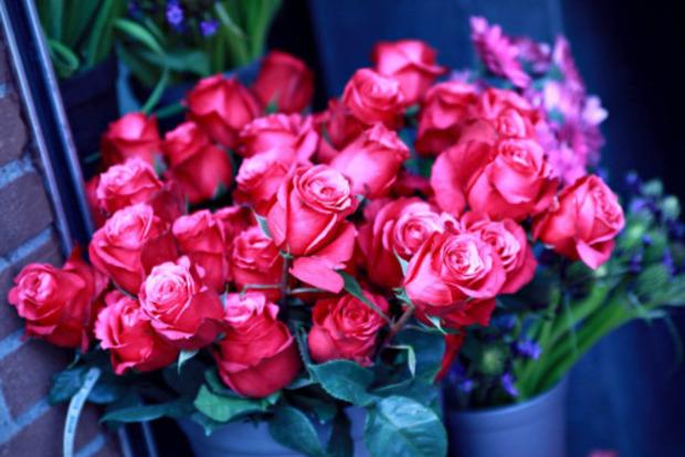 Розы в доме: приметы и удивительные свойства