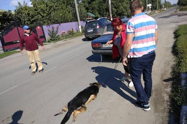 Упирі  у плоті: нелюди волокли пса через усе місто, прив'язавши до авто