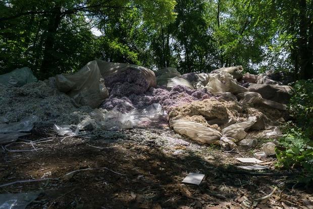 Мішки з мільйонами гривень знайдено в лісі на Дніпропетровщині