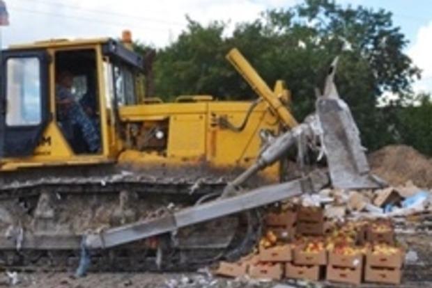 За два месяца в РФ уничтожили почти 800 тонн санкционных продуктов
