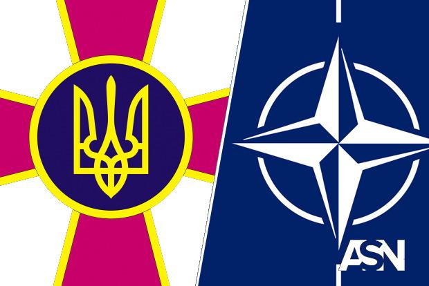 Рада приняла закон о приведении воинских званий ВСУ к стандартам НАТО