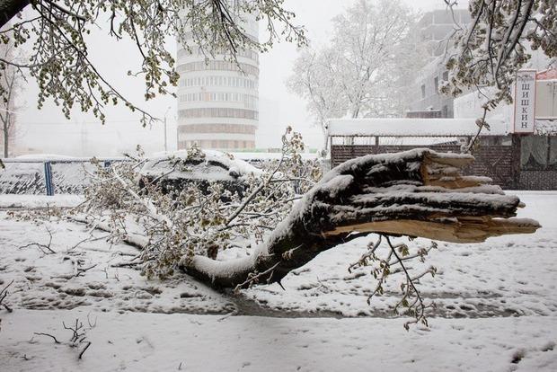 В Кишиневе ураган повалил 600 деревьев, объявлено чрезвычайное положение