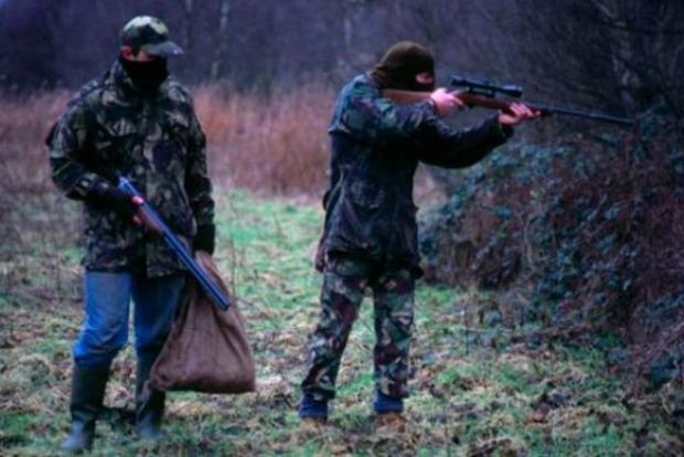 На Закарпатье задержали депутата-браконьера с убитым оленем