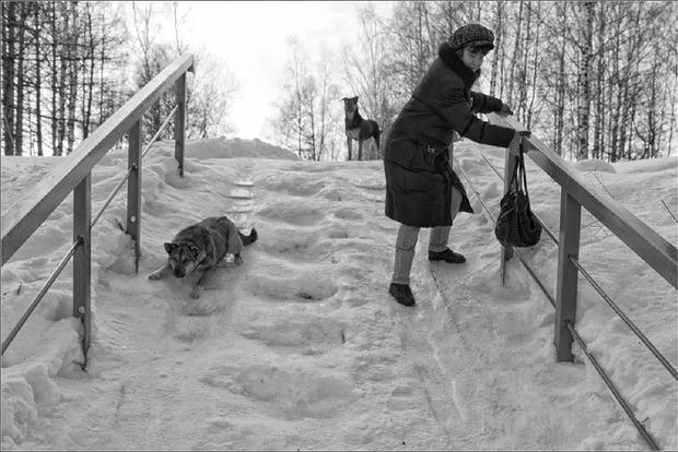 На дорогах Киева 22 декабря ожидается гололедица
