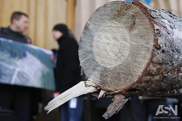 Профильный комитет ВРУ настаивает на сохранении моратория на экспорт леса