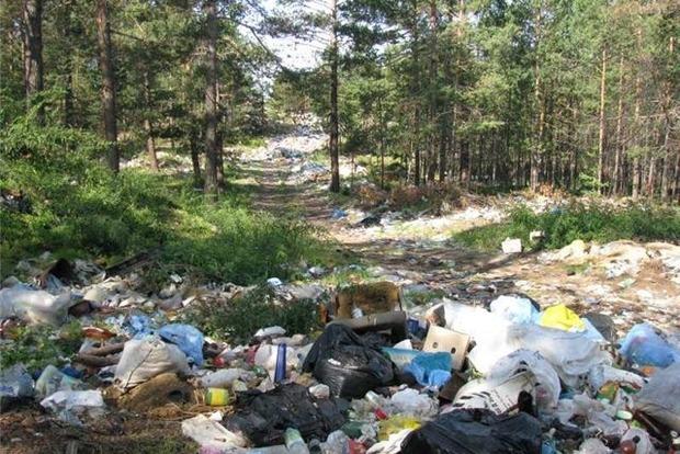 За мусор мимо урны - 5 тыс. грн. В Украине могут в разы увеличить штрафы за мусор