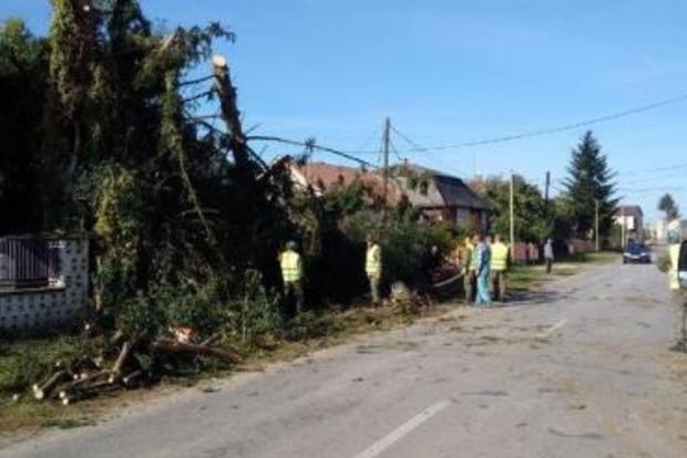 Село возле Ужгорода разрушило торнадо