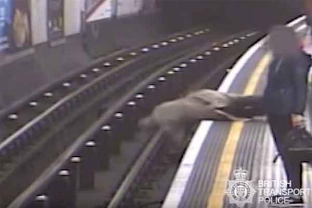 В метро Лондона столкнули на рельсы 91-летнего экс-главу Евротоннеля