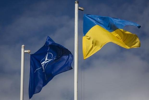 Президент рассказал, когда пройдет референдум о вступлении в НАТО