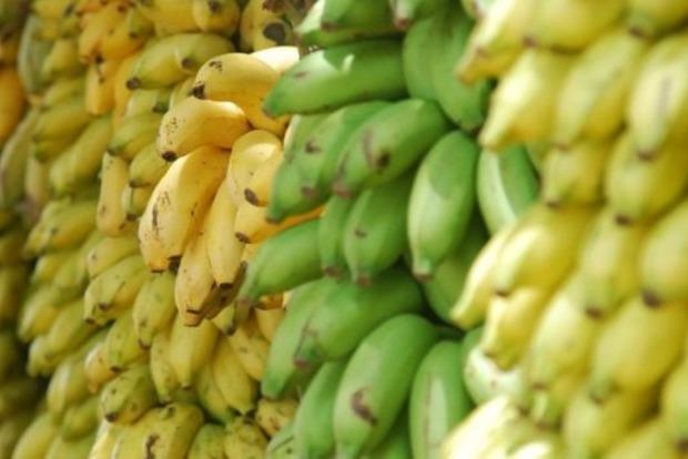 Какие бананы самые полезные: определяем по цвету