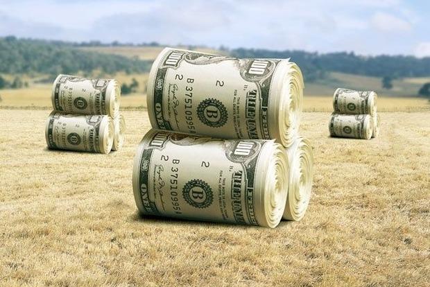 Министр рассказал, с чего начнется земельная реформа в Украине