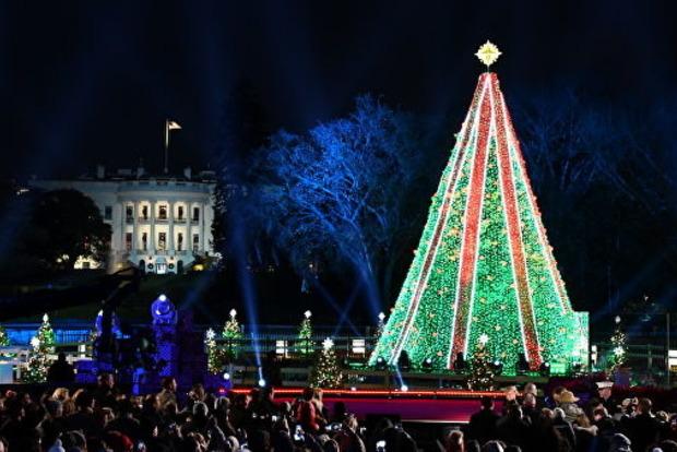 В Вашингтоне мужчина залез на рождественскую ель перед Белым домом