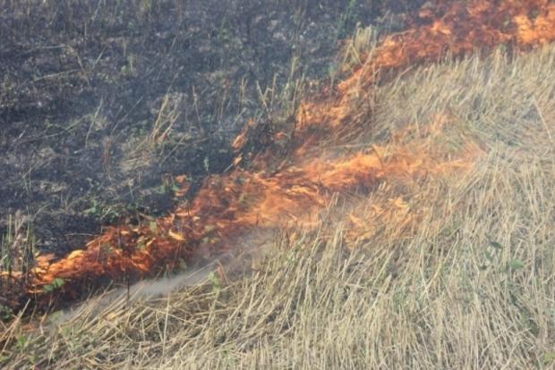 Под Мариуполем обнаружили труп военного во время тушения сухой травы