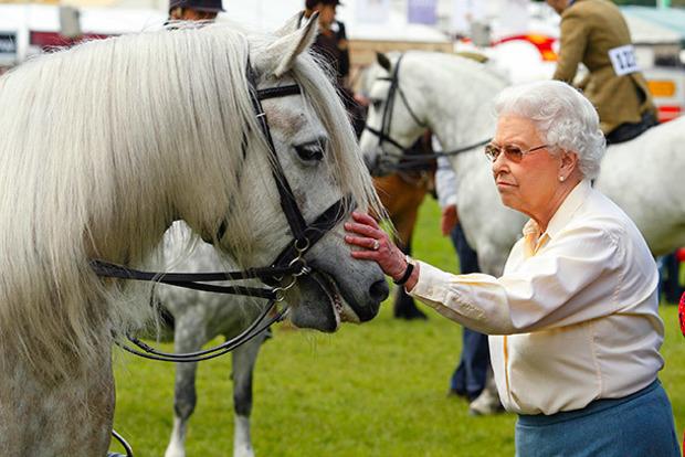 Королева Великобритании заработала на скачках более 7,5 млн евро