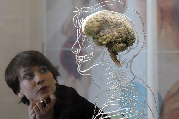 Ученые перечислили 10 привычек, которые постепенно разрушают мозг