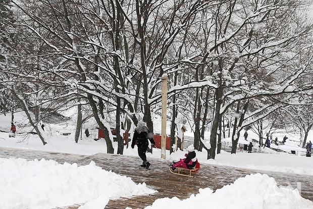 Погода продолжает брать реванш. Снегопады сменят морозы