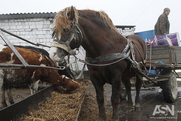Минприроды закрывает глаза на пестициды, которыми фермеры травят людей и скот по всей стране