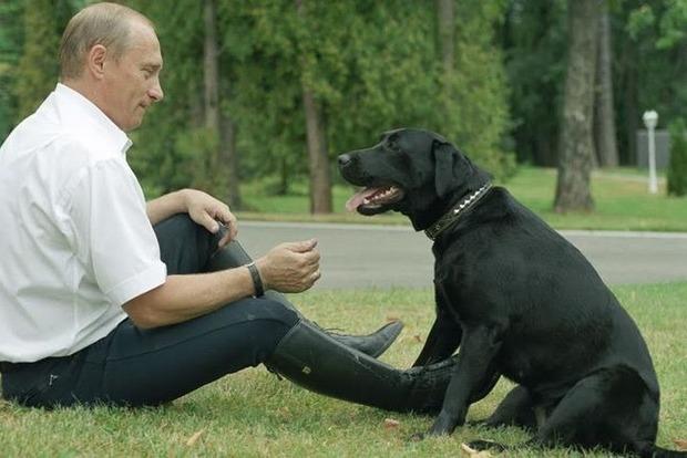 Немецкий журнал Focus извинился за то, что назвал Путина собакой