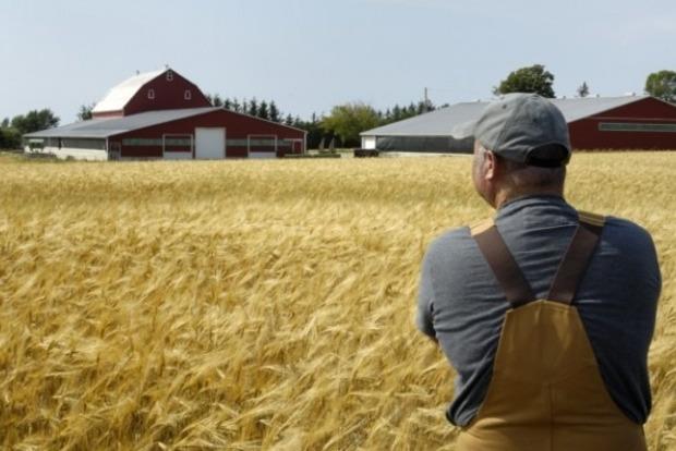 Государство компенсирует малым фермерам часть процентов по кредитах