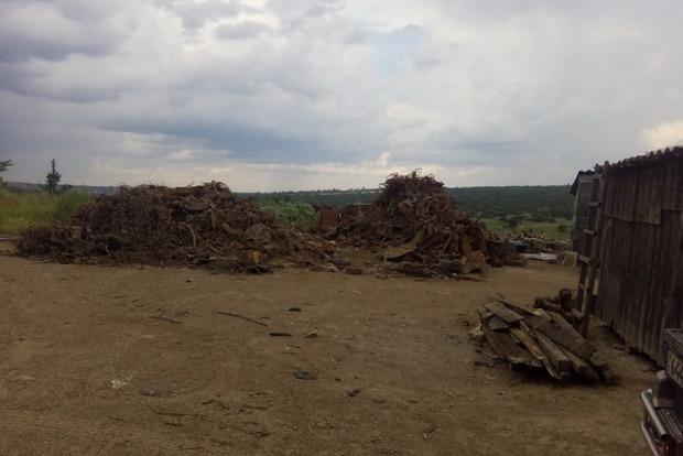 В Луганской области экологии нанесен ущерб на 50 миллионов гривен