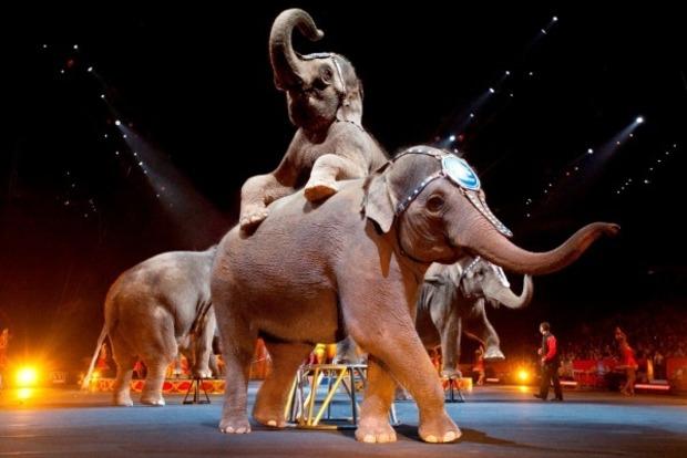Закрывается старейший передвижной цирк США