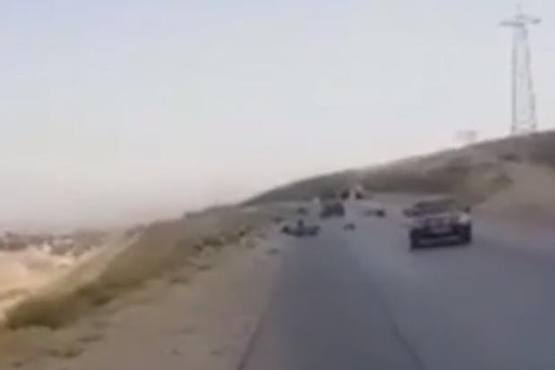 Давили машиной и добивали из огнестрела. Психопаты атаковали иностранных туристов на дороге