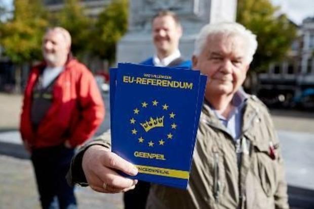 В Нидерландах на референдуме ждут явку от 28% до 31%