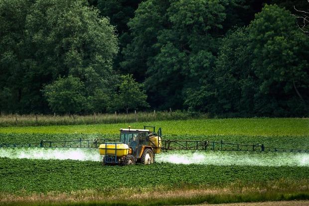 ООН призывает мир отказаться от пестицидов, но Американская торговая палата просит упростить их ввоз в Украину