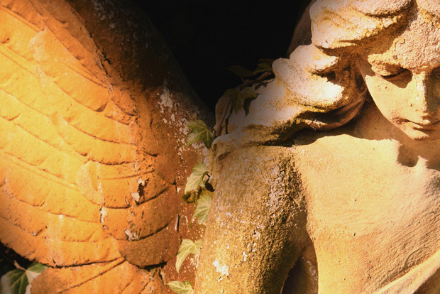 5 знаків від ангелів, які не можна ігнорувати
