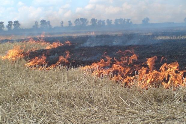 Насвітлодарських позиціях ЗСУ спалахнув вогонь