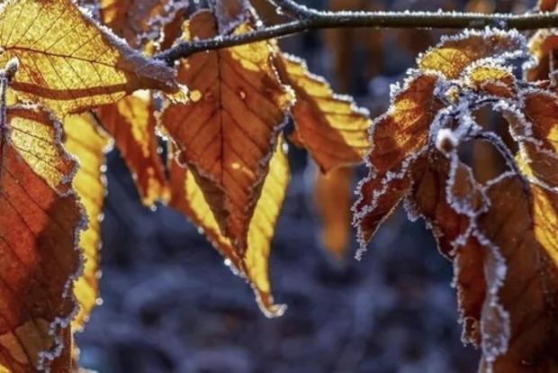В Украине во вторник потеплеет: где ждать дожди со снегом. Карта