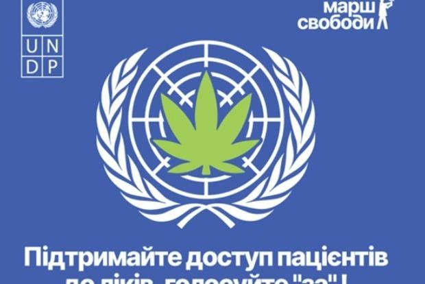 Решениею КНС ООН по каннабису цивилизованный мир будет обязан Украине