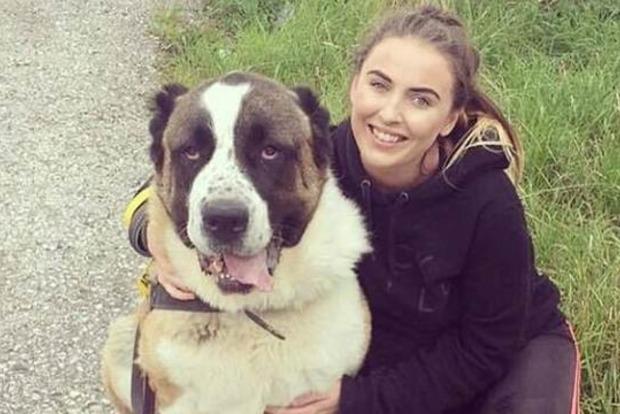 80-килограммовый пес умер от испуга из-за фейерверков