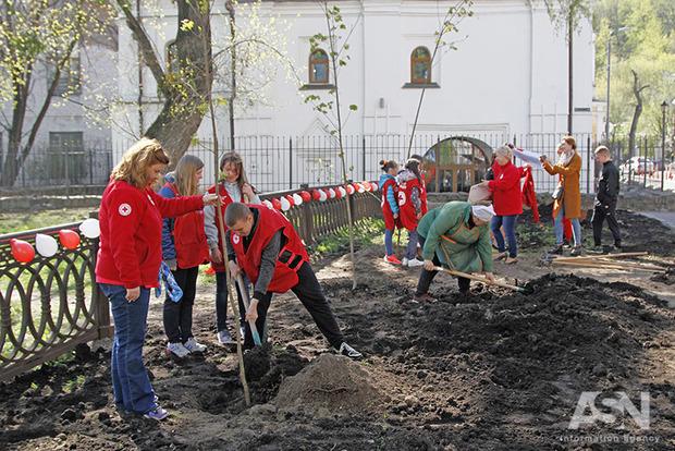 Красный Крест к столетнему юбилею посадил аллею в Киеве