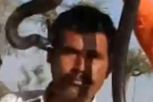 Смертельный поцелуй: в Индии турист скончался после фото с коброй