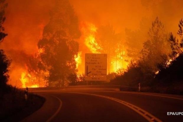 В лесных пожарах в Португалии погибли 35 человек
