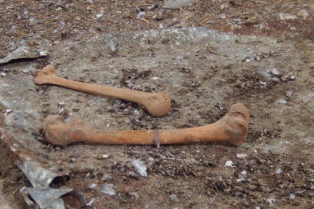 В Запорожской области в земле для клумб нашли человеческие останки