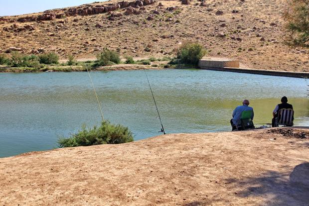 Внезапно: в пустыне на Херсонщине появилась рыба