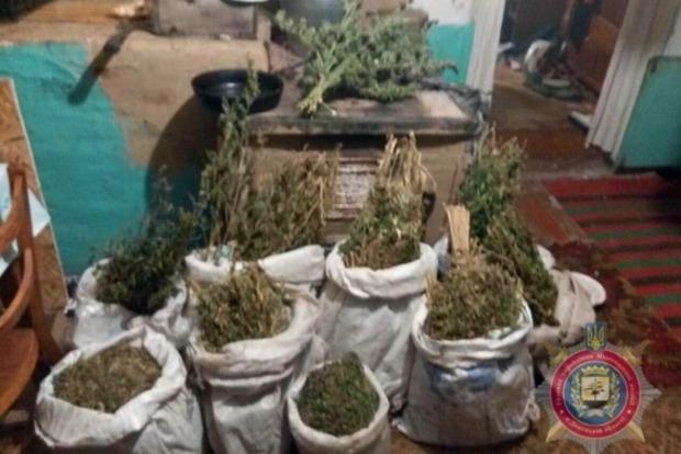 У жителя села Донецкой области забрали 9 мешков и 7 банок конопли