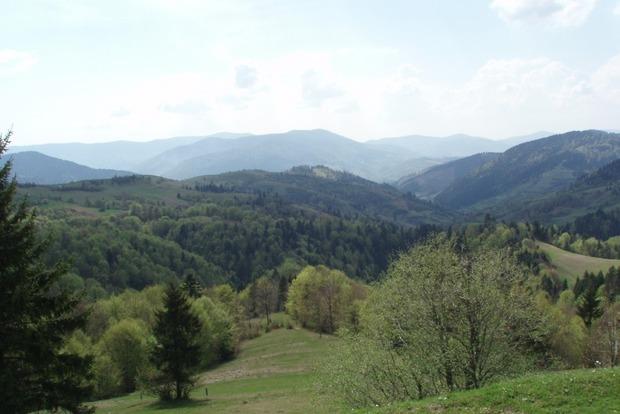 В горах Закарпатской области травмировалась гражданка Польши