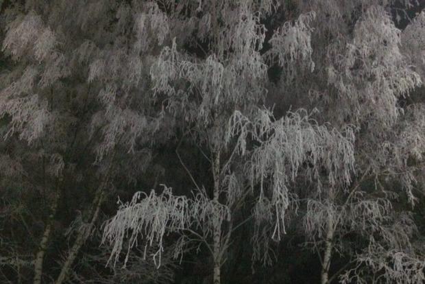 В ближайшие сутки в Украине сохранится умеренный мороз, местами туман и гололедица