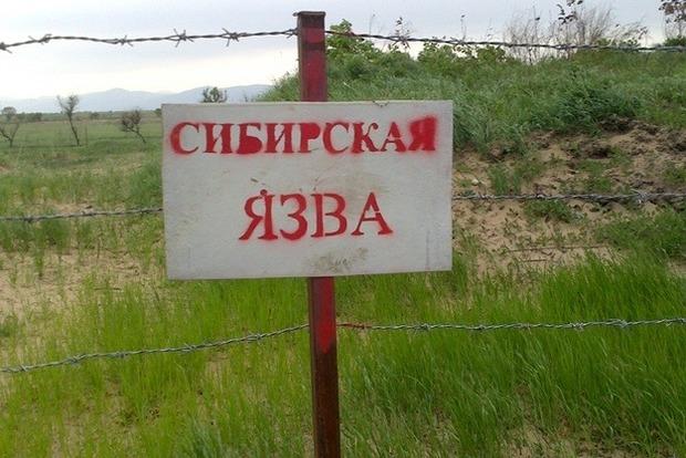 Під Одесою знову зафіксований випадок сибірської виразки